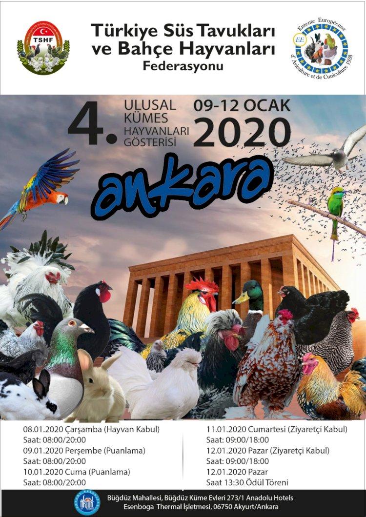 Haydi Ankara'ya !!! Hedef 1.200 üstü yarışan hayvan